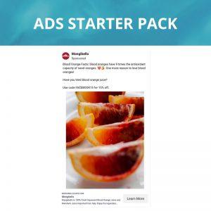 LTM Digtial Ads Starter Pack